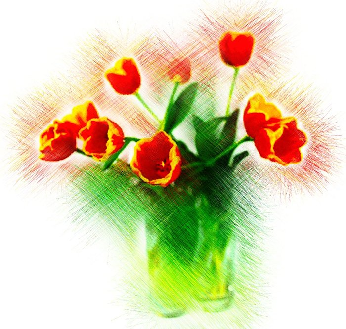 Flower Drawing App: How To Draw On Pictures With PhotoViva App